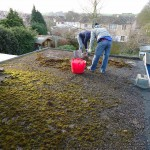 Removal of all old felt roofing